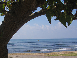 Días de playa y horas - 2/ Territorio Mítico